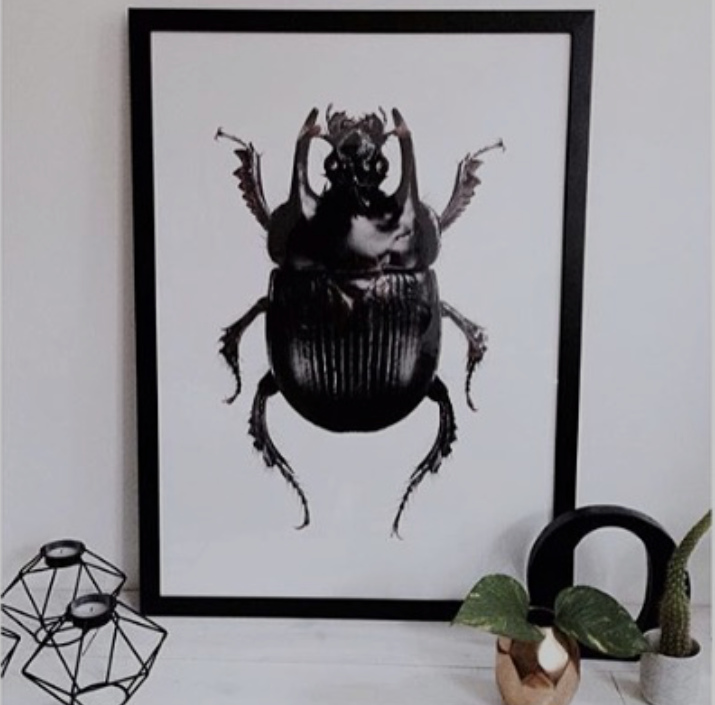 plakater bugs